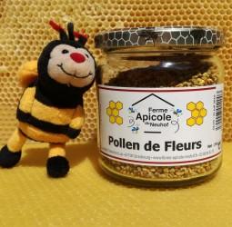 Pollen de fleurs